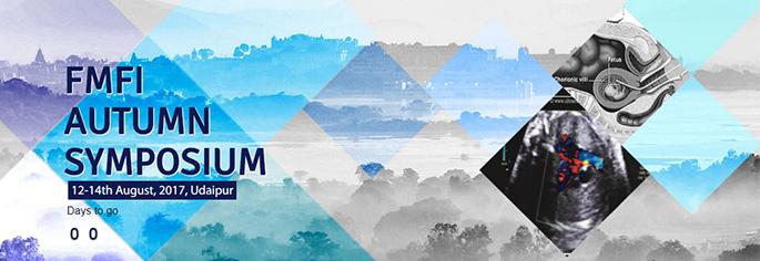 fmfi-udaipur-finised